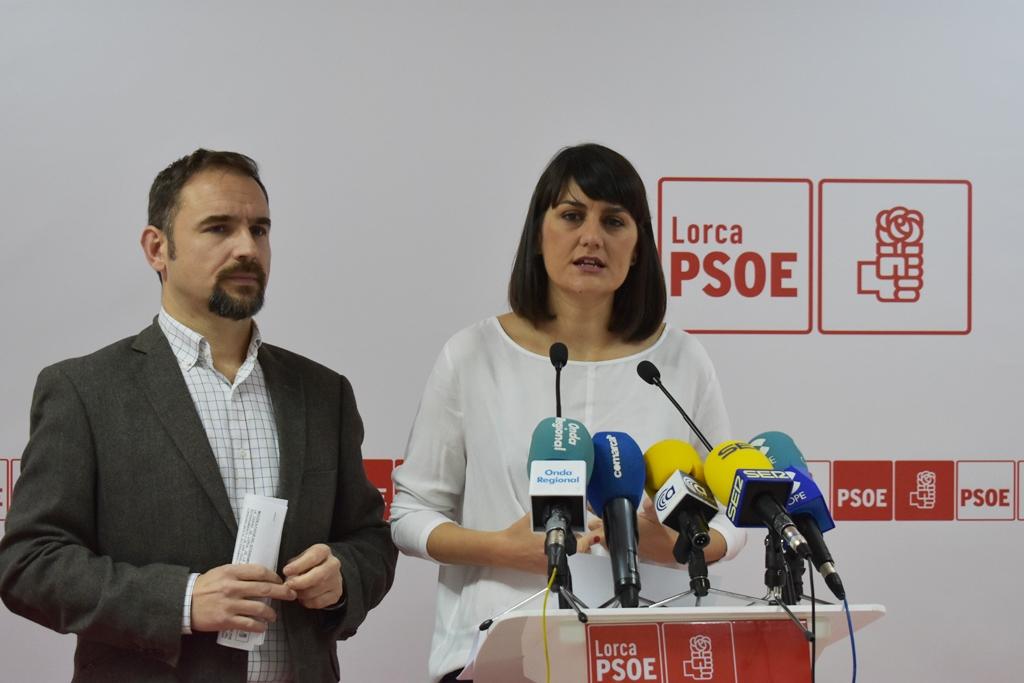 El PSOE consigue que el Gobierno negocie con los damnificados del sector fotovoltaico