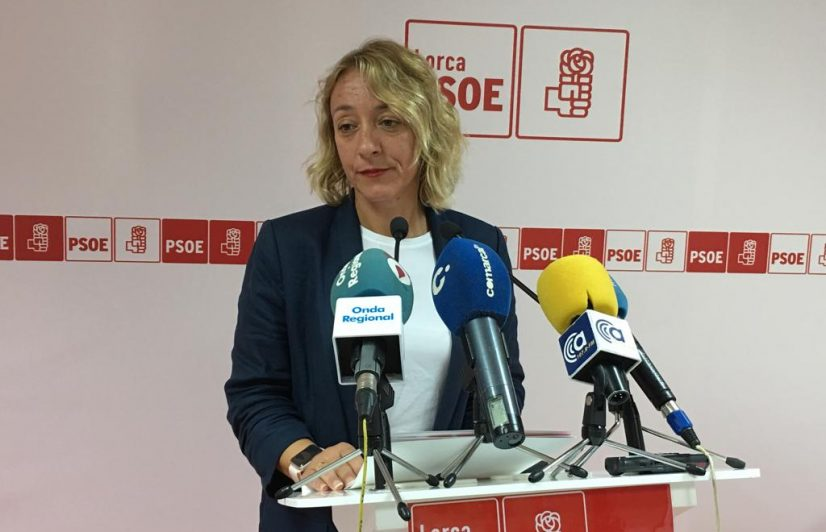 """PSOE: """"No permitiremos nunca el cierre del IES Tierras Altas"""""""