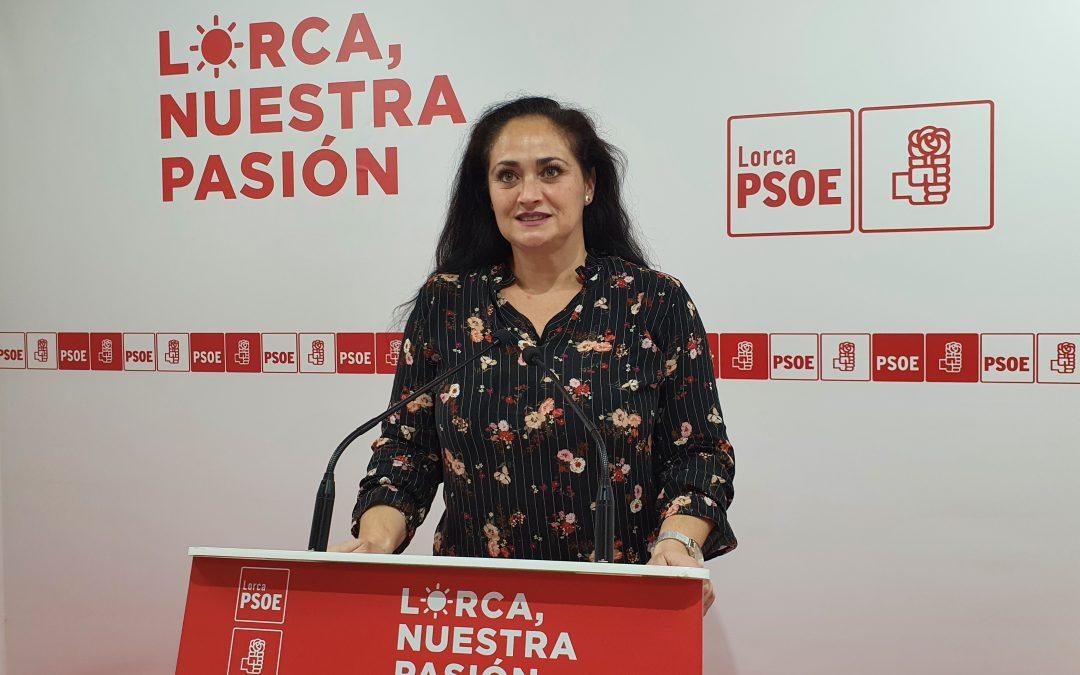"""Antonia Pérez: """"es verdaderamente sorprendente que el PP de Lorca se haya dignado a mentir e intentar engañar con una cuestión tan delicada como la educación especial"""""""